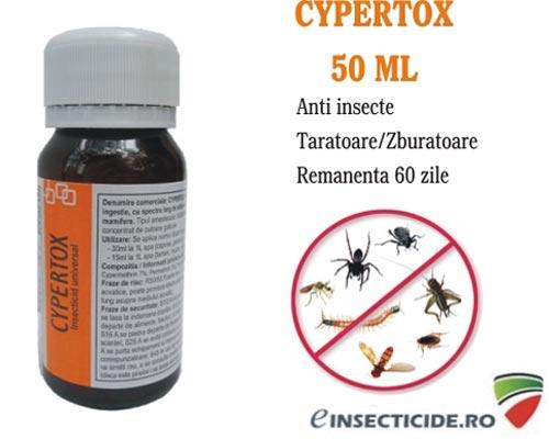 Scapa de gandacii de bucatarie cu Insecticidul de soc Cypertox 50 ml