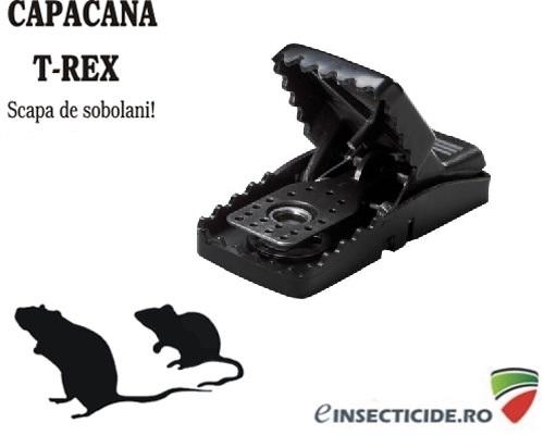 Capcana mecanica pentru soareci - Mini T-rex