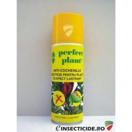 Insecticid anti-cochenille pentru protectia plantelor cu efect lustrant (200 ml) - Perfect Plant