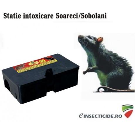 Statie intoxicare rozatoare - TOP18