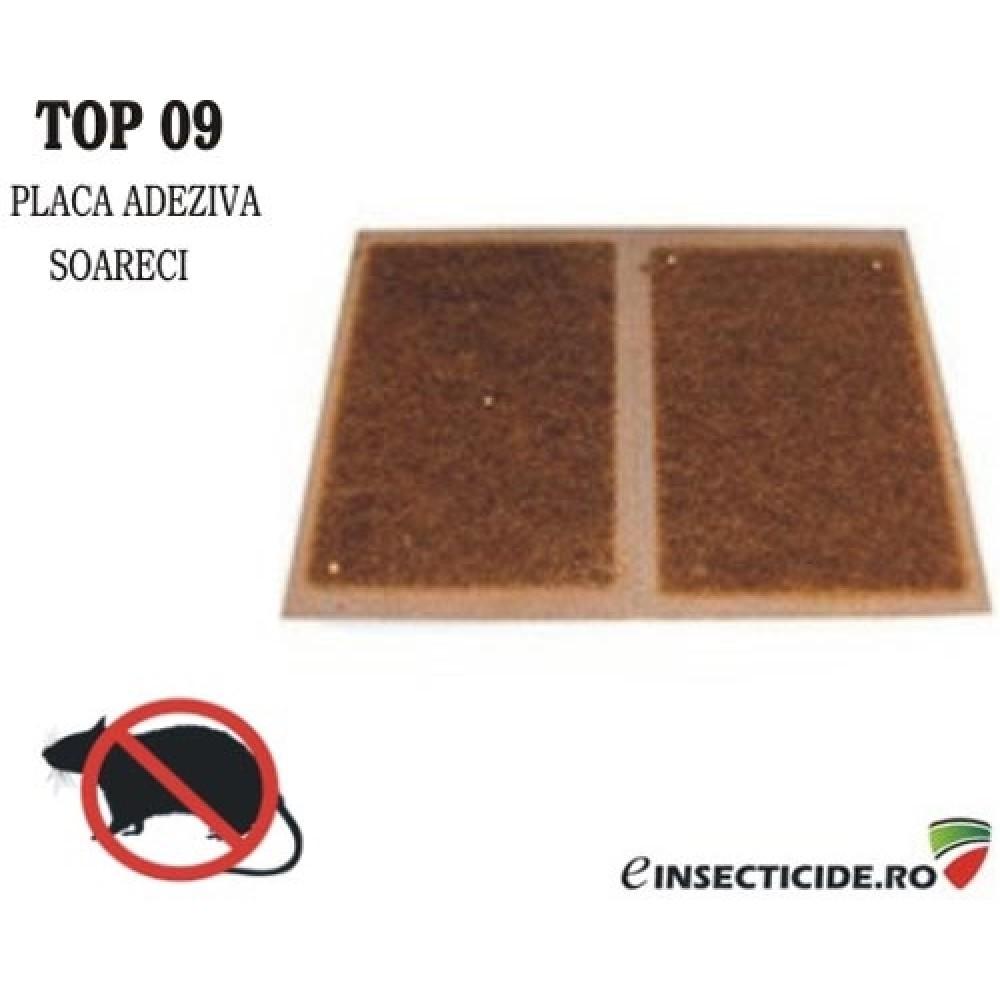 Placi adezive pentru soareci si sobolani - TOP09 (2 buc)